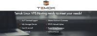 TEMOK_VPS_Hosting_Features.jpg